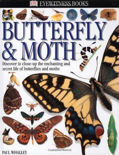 Eyewitness: Butterfly & Moth (Eyewitness Books): PH - DK Titles ...