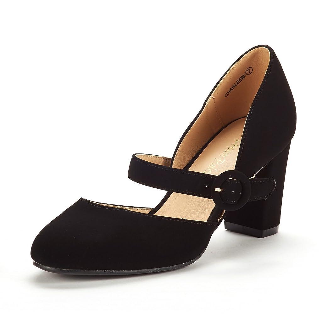 DREAM PAIRS Womens Charleen Classic Fashion Closed Toe High Heel Dress Pumps Shoes