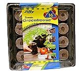 jiffy peat tomato - Jiffy 60mm Tomato Starter Greenhouse 16