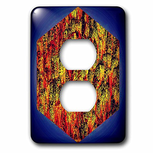 3dRose DYLAN SEIBOLD - PHOTO ABSTRACTION - Horsetail Cube Dark Background - Light Switch Covers - 2 plug outlet cover (lsp_262728_6)