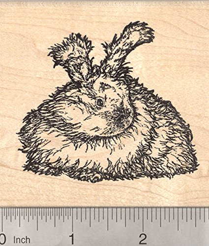 (English Angora Rabbit Rubber Stamp, Detailed Longhaired Bunny Stamper)