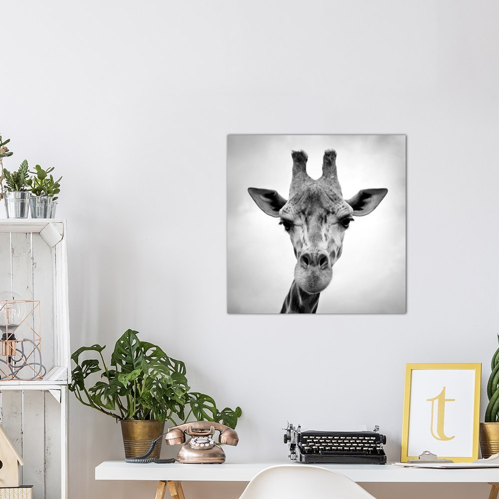 Icanvasart Giraffe Canvas Print By Photoinc Studio 26 X 26 Wall Art Home Kitchen