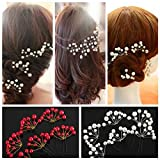 6Pcs Bridal Prom White Red Pearl Flower Hair Clip Pin Wedding Party Jewellry Beauty