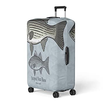 2b28af4d59f5 Amazon.com: Pinbeam Luggage Cover Striped Sea Bass Striper for in ...