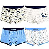 Auranso Little Boys Toddlers Cotton Boxer Briefs Underwear Dinosaur Pattern 4 Pack 2-11Y