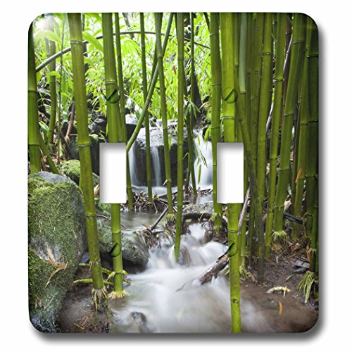 3dRose LLC lsp_89187_2 Flora Bamboo Forest Waterfall Haleakala Np Maui Us10 Jgs0016 Jim Goldstein Double Toggle Switch