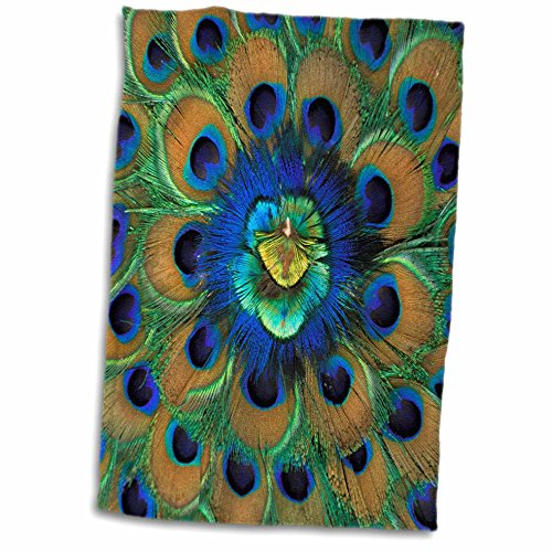 3D Rose Natural Peacock Feather Patterns-As10 Dfr0096-David R. Frazier Hand/Sports Towel, 15 x 22