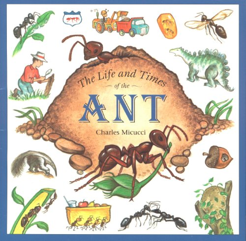 the-life-and-times-of-the-ant