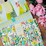 12 Sheets of Scented Drawer Liners | Cotton Meadow, Clean Cut Grass Fragrant Liner Set | Floral Lining Paper for Dresser, Vanity, Shelf, Nursery, Drawers, Cabinet | with Lavender, Fresh Linen Sachets
