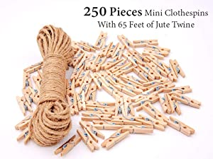 Mini Clothespins   250 Pieces Mini Clothespins with 65 Feet of Jute Twine   1-Inch Natural Wooden Clips for Decorations and Gifts by Voatation