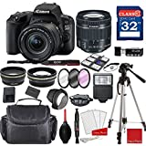 Canon EOS 200D Rebel SL2 Kit with EF-S 18-55mm f/4-5.6 IS STM Lens (Black) + Professional Accessory Bundle