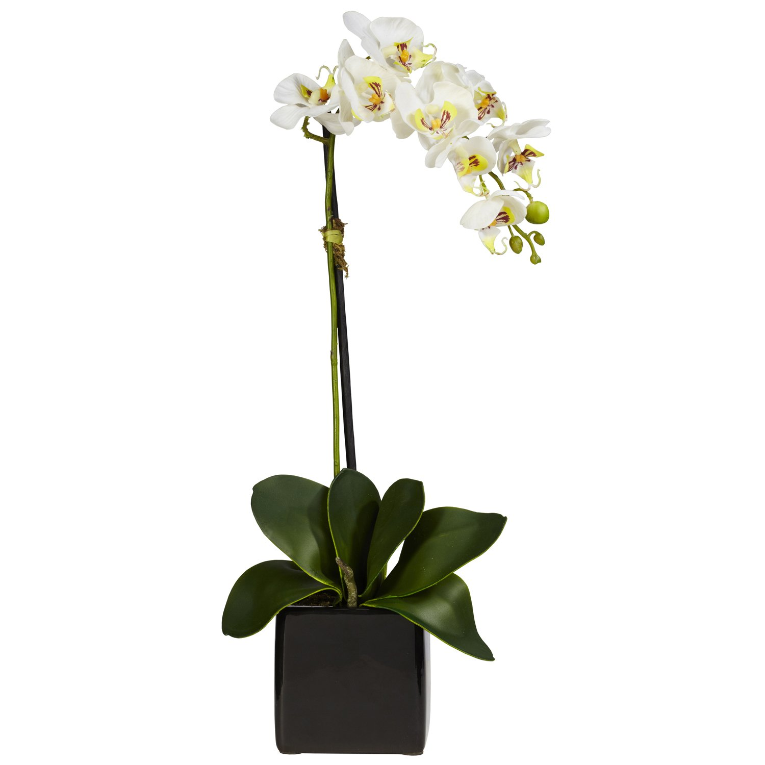 Amazon nearly natural 4757 s2 phaleanopsis orchid with black amazon nearly natural 4757 s2 phaleanopsis orchid with black vase decorative silk arrangement red and white set of 2 home kitchen reviewsmspy