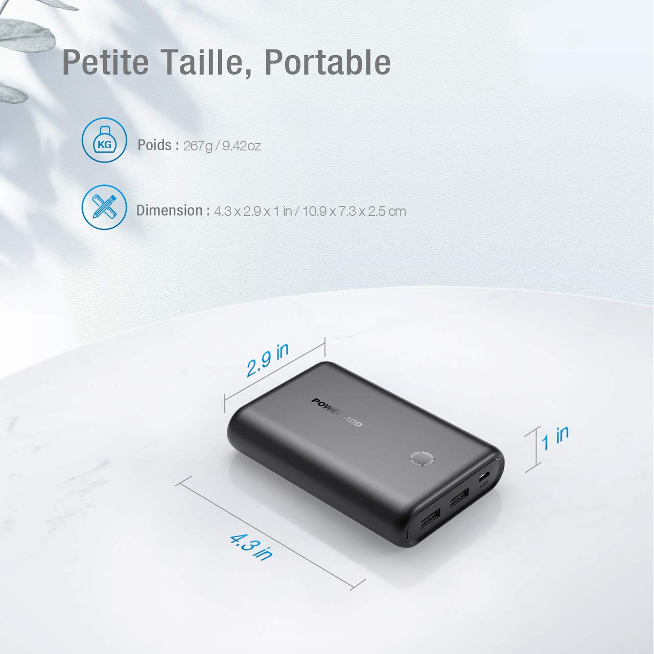 POWERADD Batterie Externe EnergyCell 15000mAh avec 2 Ports de Sortie Ultra Mini et Compacte Batterie de Secours pour iPhone, Samsung, Wiko, Huawei, Xiaomi(3 en 1 Câble Inclus) - Noir