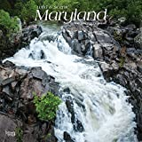 Maryland, Wild & Scenic 2019 12 x 12 Inch Monthly Square Wall Calendar, USA United States of America Southeast State Nature (English, French and Spanish Edition)