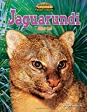Jaguarundi: Otter Cat (America's Hidden Animal Treasures)