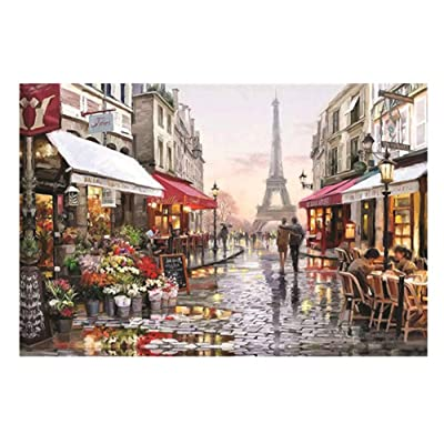 GTGY Puzzle 1000 Piece Jigsaw Puzzle Kids Adult Jigsaw Puzzle Game Toys Gift (No.15): Toys & Games