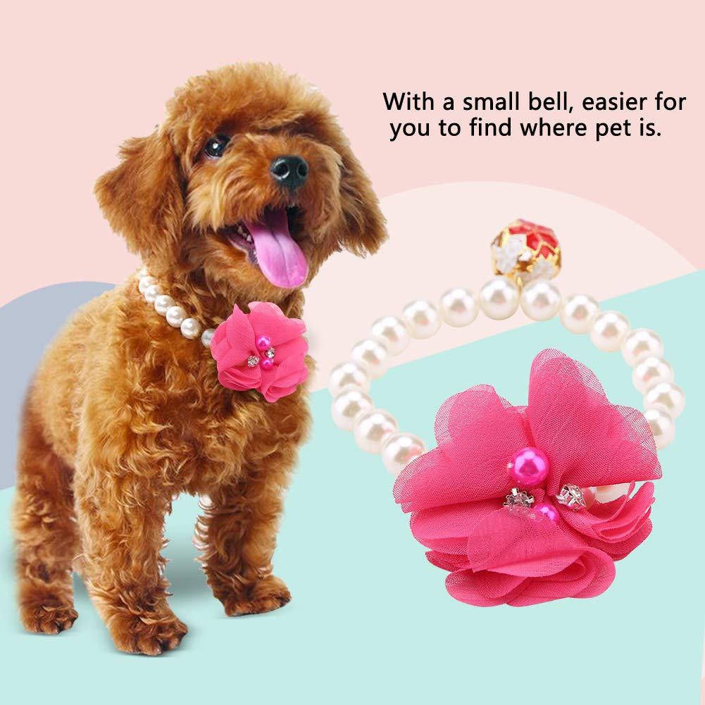 Encaje de Perla Flor Adorno Perro Semme Collar de Perlas para Perro Collar de Perlas Gato Elegante y a la Moda Collar de Flores de Perlas