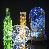 LED Fairy Lights, Oak Leaf 2 Set of USB 60 LED