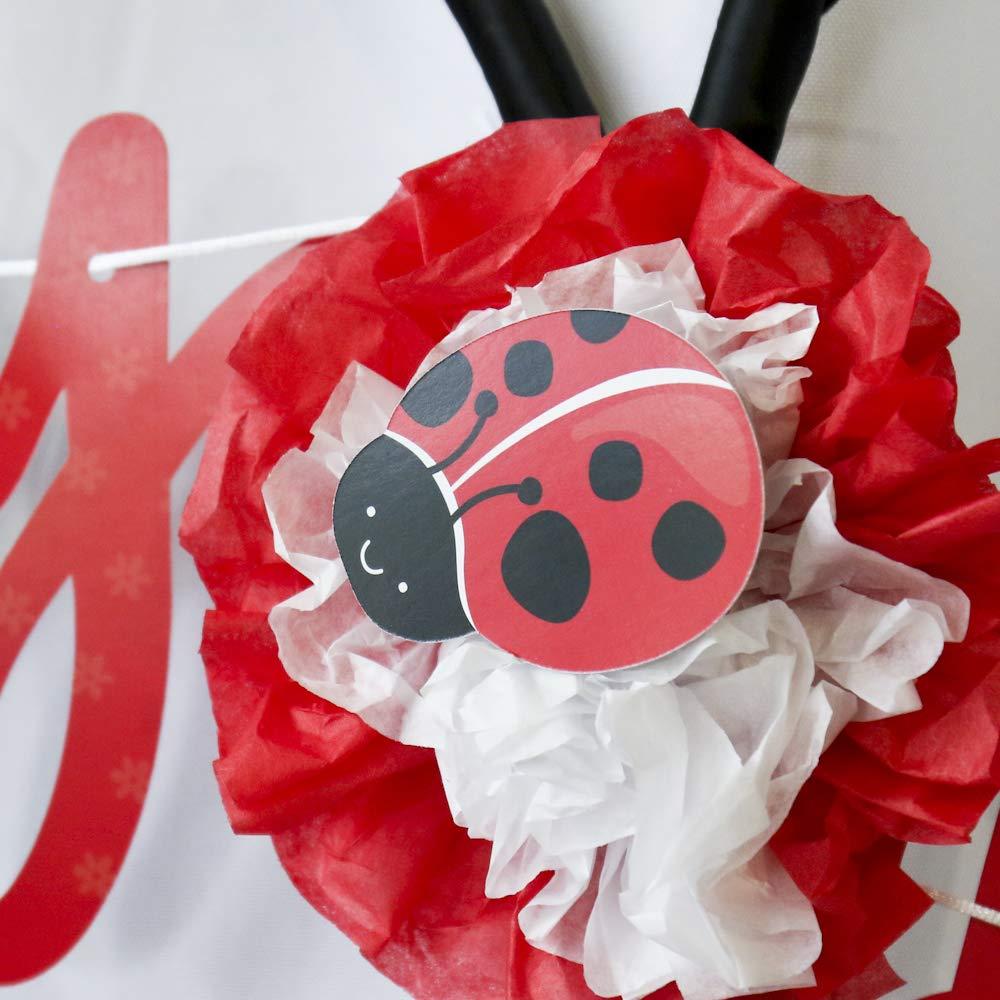 Amazon.com: Moderno catarina – DIY bebé en forma de ducha o ...
