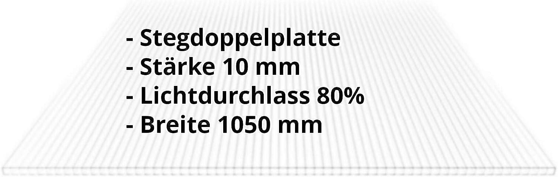 Farbe Glasklar Stegplatte Breite 1050 mm St/ärke 10 mm Doppelstegplatte Hohlkammerplatte Material Polycarbonat