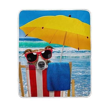 DOSHINE Manta, Animal Perro Verano Playa Suave Ligero cálido Mantas 50 x 60 Pulgadas para