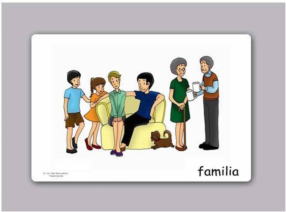 Amazon.com: Tarjetas de vocabulario - Familia- Family ...