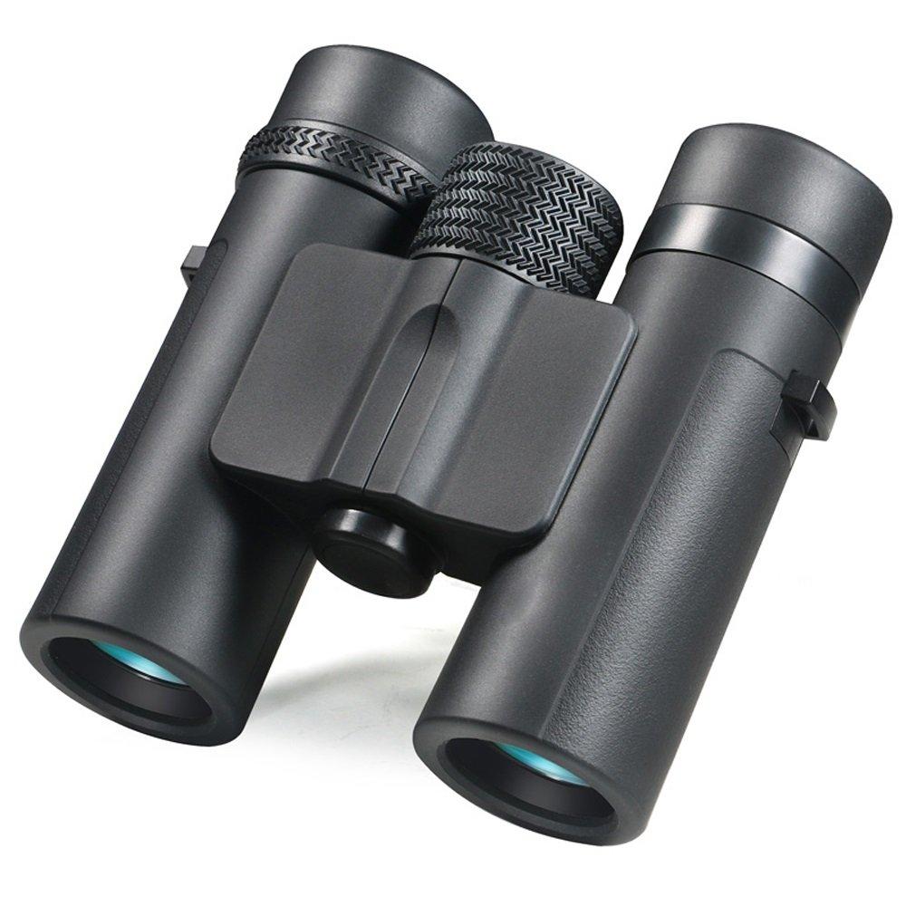 8x26コンパクト双眼鏡、低照度ナイトビジョン、大型接眼レンズ屋外での狩猟、バードウォッチング、旅行、観光に適したハイパワー防水双眼鏡、大人と子供に適しています B07DG58P5C 8×26 8×26