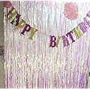 Anleolife 2PCS Metallic Foil Fringe Curtains 3 ft W. x 6.6 ft. For Bridal Baby Shower Backdrop Birthday Party Photo Booth Graduation Party Photo Wall Base Door Frame Decor (transparrent white)