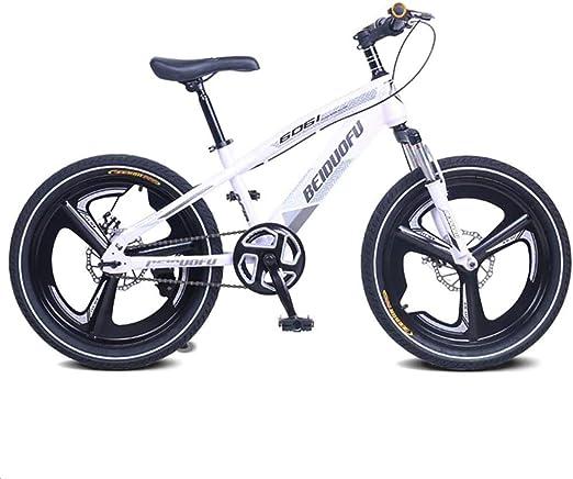 YANQ Freno de Bicicleta de montaña en Bicicleta de una Sola Velocidad suspensión Tenedor de Bicicletas de Doble accionamiento para los niños, Muchachos, Muchachas, 20inch Gris de ATV,Gri.: Amazon.es: Hogar