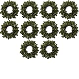 Factory Direct Craft Group of 6 Artificial Holiday Pine Wreaths (6 Inch)