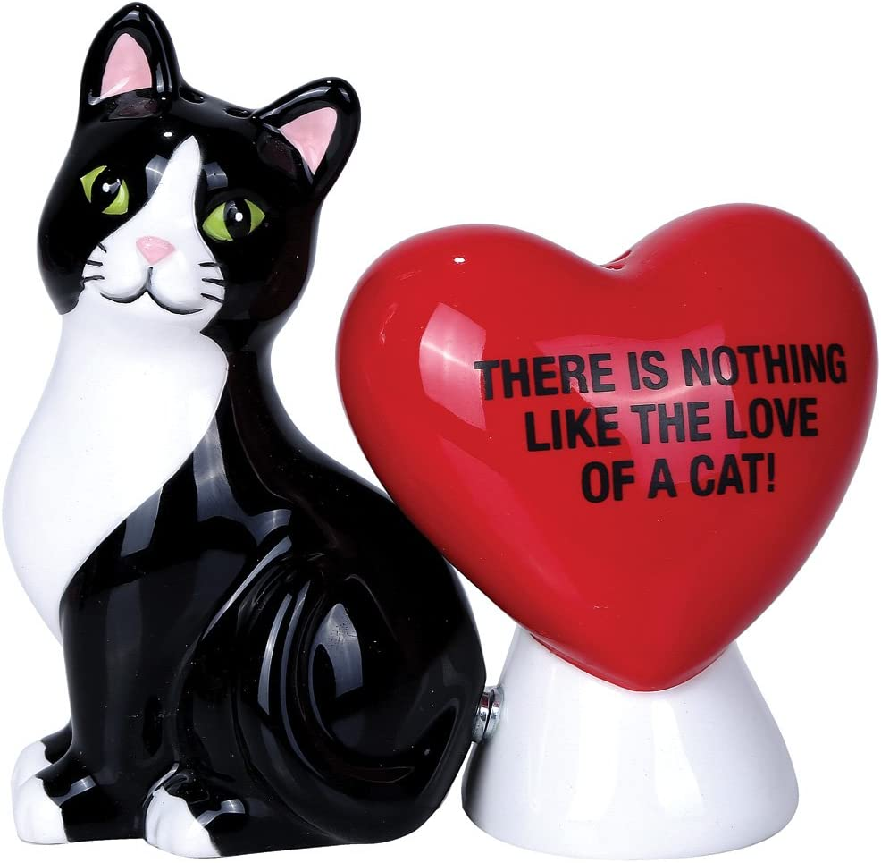 Atlantic Collectibles Valentine Cat With Heart Salt & Pepper Shakers The Love of A Cat Ceramic Magnetic Figurine Set 3.5