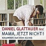 Mama, jetzt nicht! Kolumnen aus dem Alltag | Daniel Glattauer