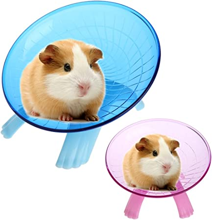 Small Animal Comfort Exercise Wheel For Pet Syrian Hamsters Rat Gerbils Mice Chinchilla Guinea Pig Squirrel Blue Amazon Ca Pet Supplies