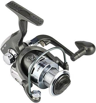 Espeedy Spinning Carrete de Pesca,12BB Ball Bearing 5.5: 1 Ratio ...