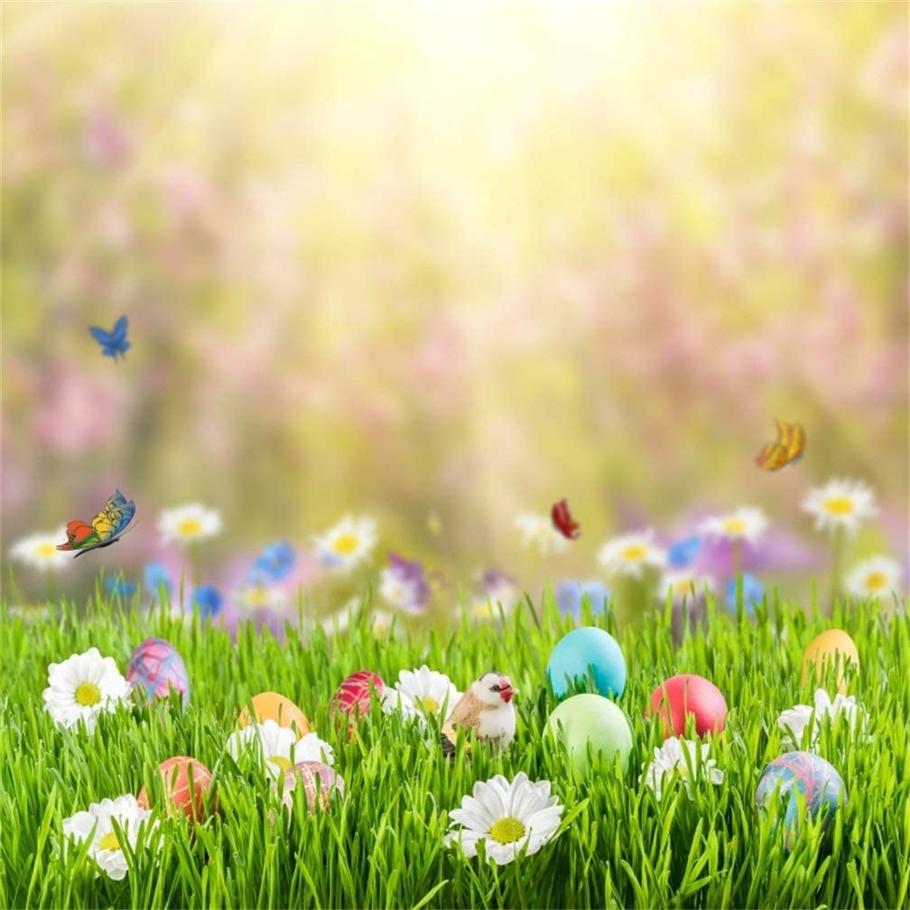 Leyiyi 6x6ft Photography Background Happy Easter Day Backdrop Colored Eggs Hand Made Spring Holiday Lily Blosom Chicken Grassland Bokeh Garden Butterfly Jesus Christ Photo Portrait Vinyl Studio Prop