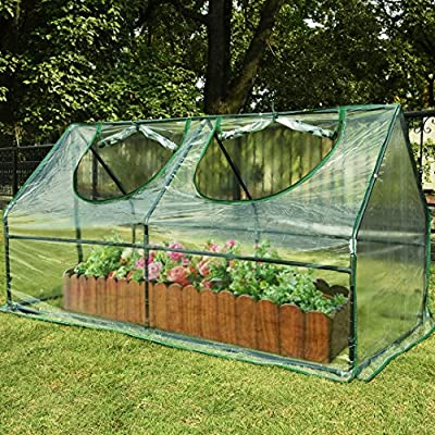 "Quictent Waterproof UV protected Reinforced Mini Cloche Greenhouse 71""WX 36""D X 36""H Portable Green Hot House"