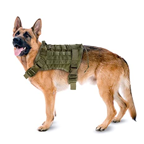 Snaked cat Arnés de Entrenamiento táctico para Perros K9 de la policía de Gatos para Entrenamiento Militar, Ajustable, Resistente al Agua, para Perros ...