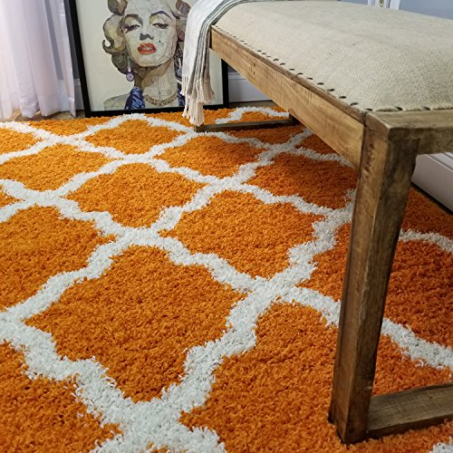 Maxy Home Bella Trellis Orange 5 ft. x 7 ft. Shag Area Rug