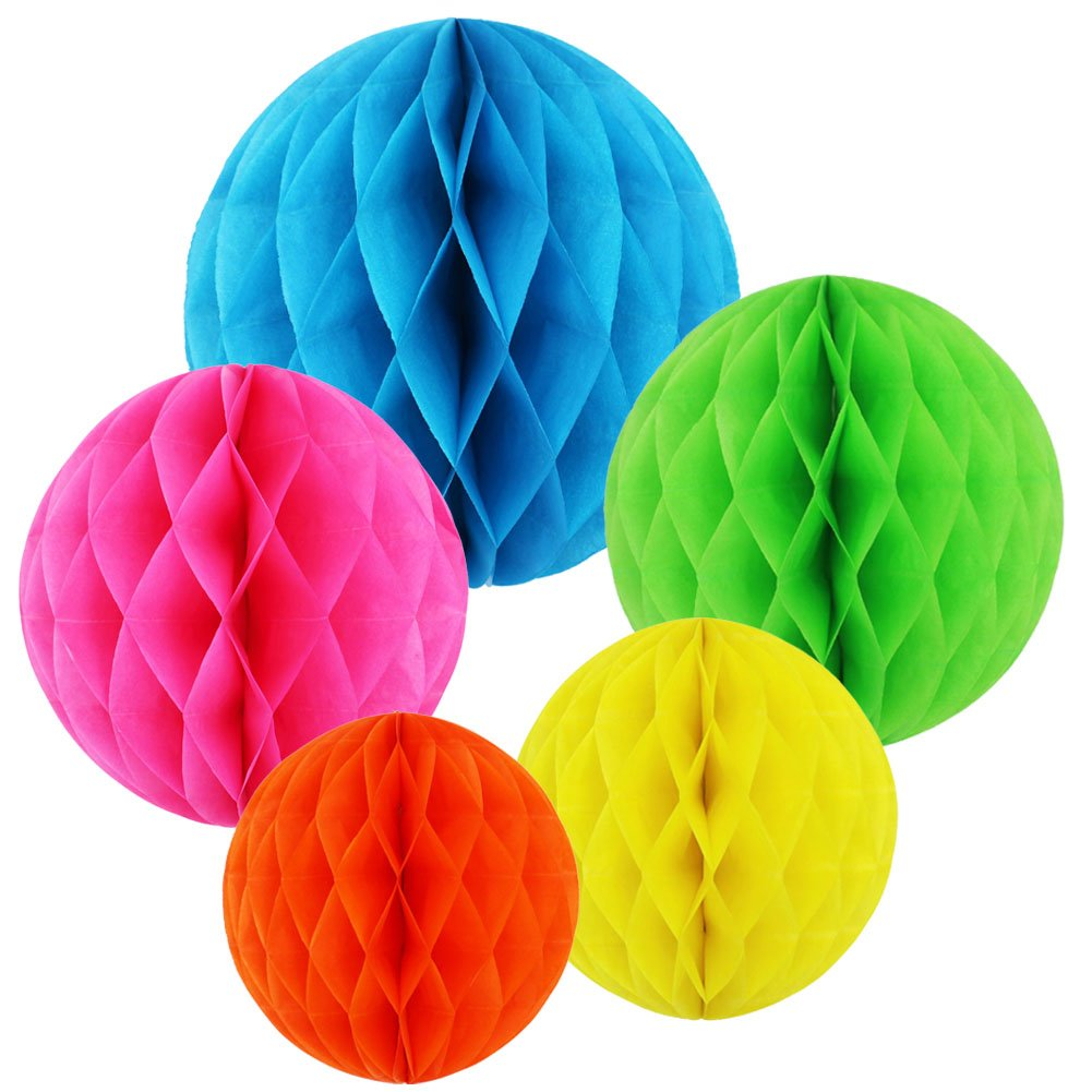 SUNSWEI 10 PCS 5 Colors 10 Inch, 6 Inch Honeycomb Tissue Paper Flower Balls, Tissue Paper Pom-poms Flowers Craft Kit For Wedding Birthday Party and Baby Shower Decoration