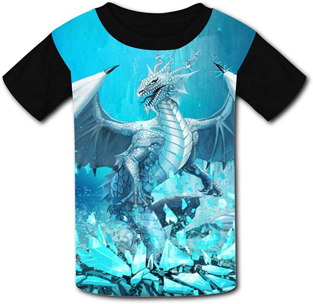 Kids Custom Ice Dragon T-Shirts Boys Girls Teenager Tee Shirt Children Youth Graphics Tees