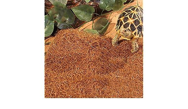 JRTAN&Pet Tortuga y Reptiles Sustrato Alfombra Caja de Tortuga y ...