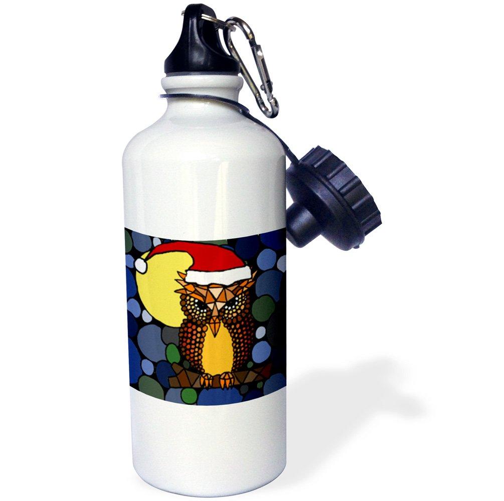 wb/_200141/_1 21oz 21 oz Multicolor 3dRose Christmas Owl Art Abstract Original-Sports Water Bottle