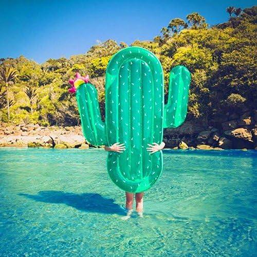 Amazon.com: Gigante Cactus hinchable flotadores de piscina ...