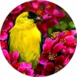 Accent Magnet-Goldfinch - Auto - Home - Kitchen -Yard -Six (6) Inch - Made in USA - Licensed , Copyrighted by Custom Decor Inc.