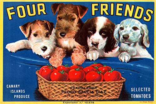 (FOUR FRIENDS DOGS SELECTED TOMATOES CANARY ISLANDS PRODUCE CRATE LABEL ON CANVAS REPRODUCTION)