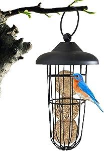 Outdoor Bird Feeder, Hanging Fat Ball Feeder, Wire Suet Ball Holder Bird Food Dispenser Seed Dispenser Millet Holder Creative Parrot Treat Box Fruit Vegetable Feeders