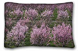 Custom Cotton & Polyester Soft Nature Custom Cotton & Polyester Soft Rectangle Pillow Case Cover 20x30 inches (One Side) suitable for King-bed