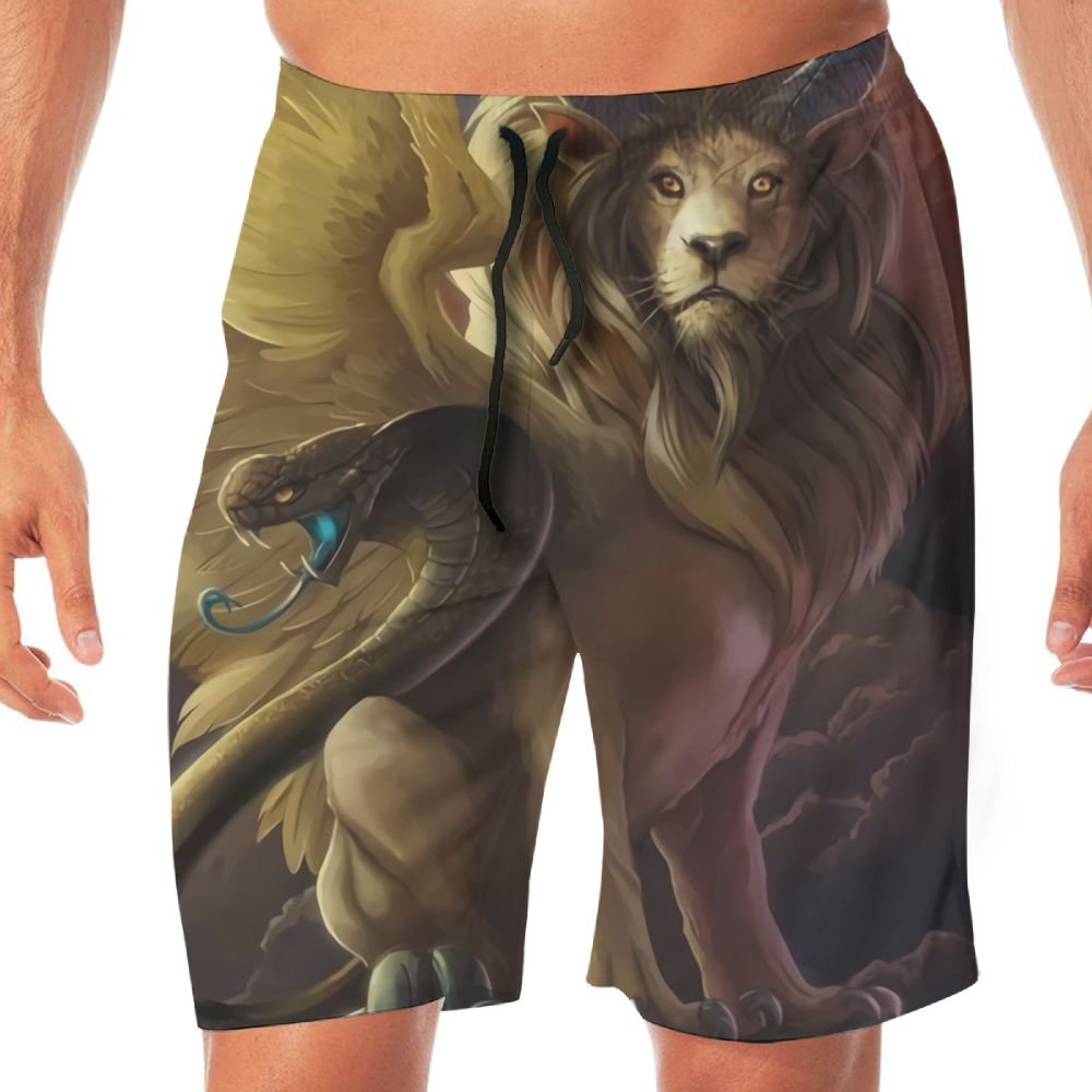 Mens The Chimera Causal Beach Shorts with Elastic Waist Drawstring Lightweight Slim Fit Summer Short Pants with Pockets