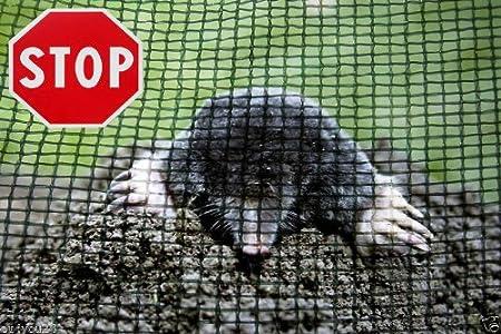 Meterware Maulwurfnetz Maulwurfsperre Maulwurfbekämpfung Schutznetz HaGa® 2m