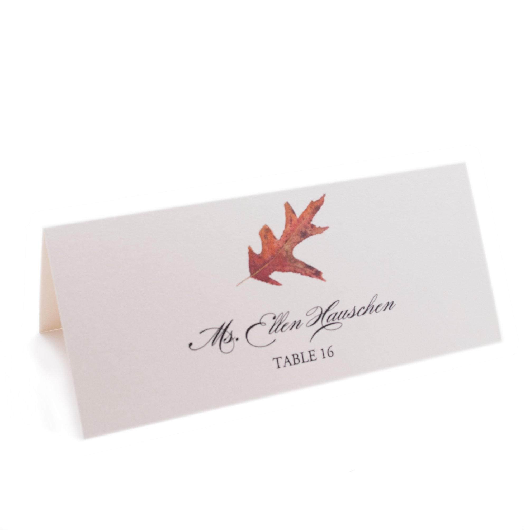 Leaf Place Cards, Assorted Designs, Champagne, Set of 375 by Documents and Designs